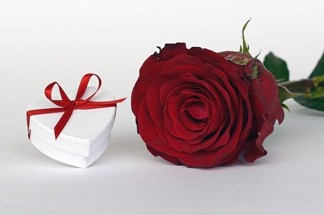 růže a srdíčko.jpg